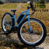 2017 Green Power 350W MID Drive Fat Electric Bike for Sale