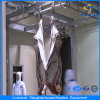 Automatic Equipments for Cattle Abattoir Exported