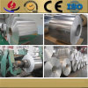 Color Coated Aluminum Coil for Aerospace and Phone Body