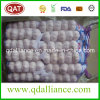 2017 New Crop White Garlic with Good Price