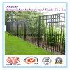 Powder Coating 2.4m Length Wrought Iron Tubular Fence with High Quality