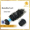 Wholesale Unprocessed Fashion Texture Curly 100% Malaysia Virgin Remy Human Hair Extension