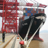 20ft and 40ft Sea Shipping From Shenzhen to Rotterdam