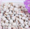Manufacturer Semen Coicis/ Coix Seed 10: 1 Extract Powder