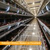 Automatic poultry equipment chicken layer cage for sale