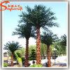 China Manufacture Fiberglass Plastic Artificial Palm Tree