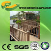 Cheap Wood Composite Fence or Railing with CE