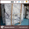 High Quality Italy White Marble Slab with Good Price