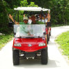 Golf Cart, Utility Vehicle, 2seat with Golf Bag