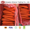 Fresh Top Quality Carrot with High Standard