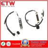 Pke Antenna for Car Handle