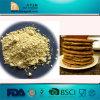 Xanthan Gum Food Grade E415 Xanthan Gum 234-394-2