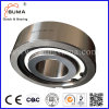 One-Way Freewheel Clutch Bearing with Sprag Cka60130 Cka65140
