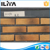 Decorative Stone, Wall Cladding Artificial Cultured Stone (YLD-20037)