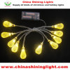Warm White Yellow Color 1m Battery Operated LED Party Lights