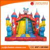2017 Giant Inflatable Double Lanes Slide for Amusement Park (T4-512)