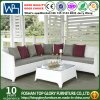 Modern Outdoor Patio Fabric Sofa Set (TG-045)