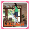 Aluminum Extension Multi-Purpose Ladder /Combination Loft Ladder