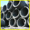Prime Hot Rolled Steel Wire Rod in Coil