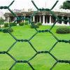 OEM PVC Coated Hexagonal Wire Mesh