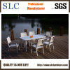 Fashionable Outdoor Furniture/Aluminium Design Outdoor Furniture (SC-B8877)