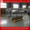 Regular Spangle Hot DIP Galvanized Steel Sheet in Coils