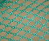 Green PP Knotless Trailer Cargo Net