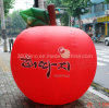 Big Red Inflatable Apple (BMCT52)