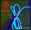 LED Christmas Rope Lights