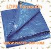 LDPE Tarpualin Tent Tarpaulin & PE Covers