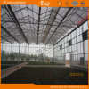 Good Heat Insulation Performance Glass Greenhouse