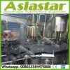 Automatic Glass Bottle Twist off Cap Fruit Juice Filling Machine