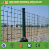 Low Cost Green PVC Coated Holland Fence