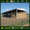 Light Steel Structure Hangar for Sale (L-S-0050)