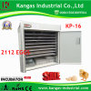 Commercial Industrial Solar Eggs Incubator Machine Price with Controller