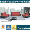 Hot Sell Modern Furniture Office Sofa (C07)