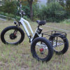 Front Motor Electric Tricycle with Lithium Battery