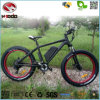 500W Electric Beach Bike Disk Brake Bicycle Scooter