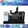 Open Design ATS Controller 200kw ISO Ce Diesel Generator Set