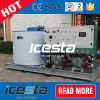 10 Tons Dry Flake Ice Machine for Fishery