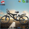 Wholesale 250W MID Drive Motor Electric Mountain Bike