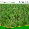 Healthy and Easy Installation Landscaping Grass