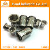 Ss316 Reduced Head Half Hex Body Open End Rivet Nut