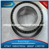 Xtsky Auto Parts Taper Roller Bearing (32221/NU221)