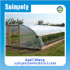Hot Sale Film Tunnel Hydroponic Greenhouse Systems