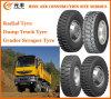 Radial OTR Tyre, Dump Truck Tyre, Grader Scraper Tyre