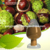 Natural Extract 98% Aescin