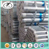 Hot DIP Galvanized Steel Pipe/Tube for Wholesaler