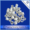 Chemical Packing Ceramic One Ring for Drying, Cooling Tower