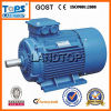 TOPS Y2 Series AC Motor High Rpm Y2 Motor